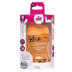 Сет стаза со диносауруси